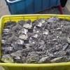 回收各种锡条、锡线、锡定,锡膏,锡渣,锡灰等