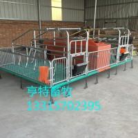 泊头双体母猪分娩产床养殖设备厂家供应